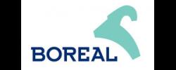 logo boreal 320x120 250x100 Marcas