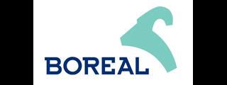 logo boreal 320x120 Reparación de Pies de Gato